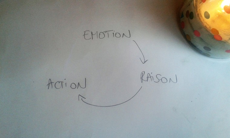emotion-raison-action